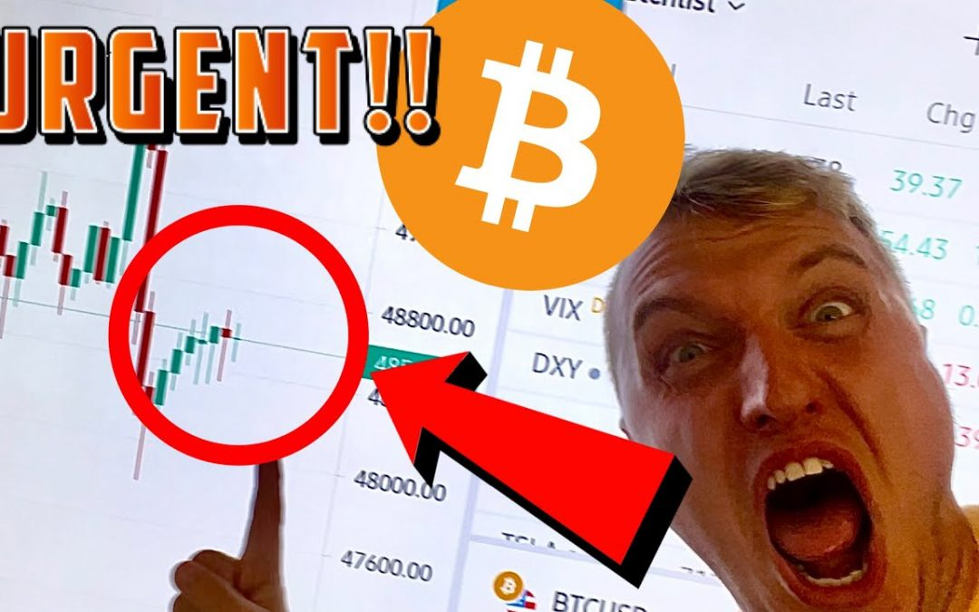 LAST TIME THIS HAPPENED BITCOIN MOVED 700%!!!!!!!!!!!!!!!!!!!!!!